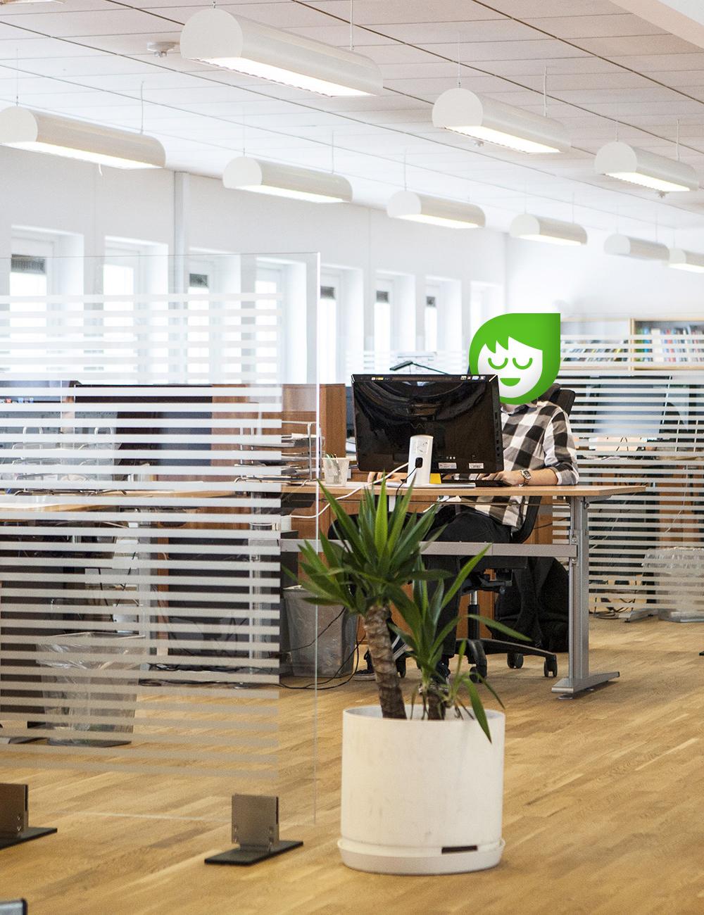 Développement d'applications web à Lyon