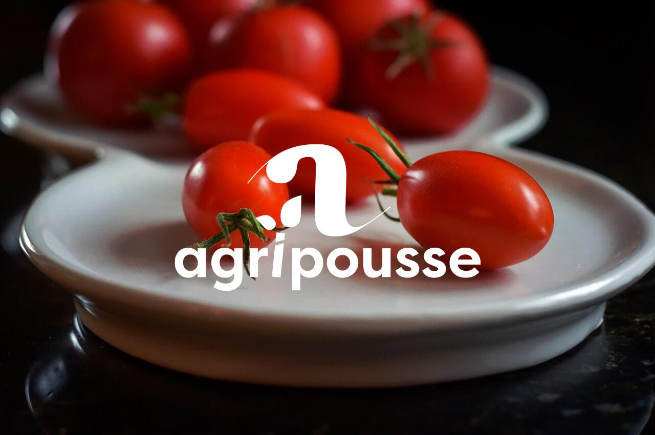 Développement de l'application Agripousse