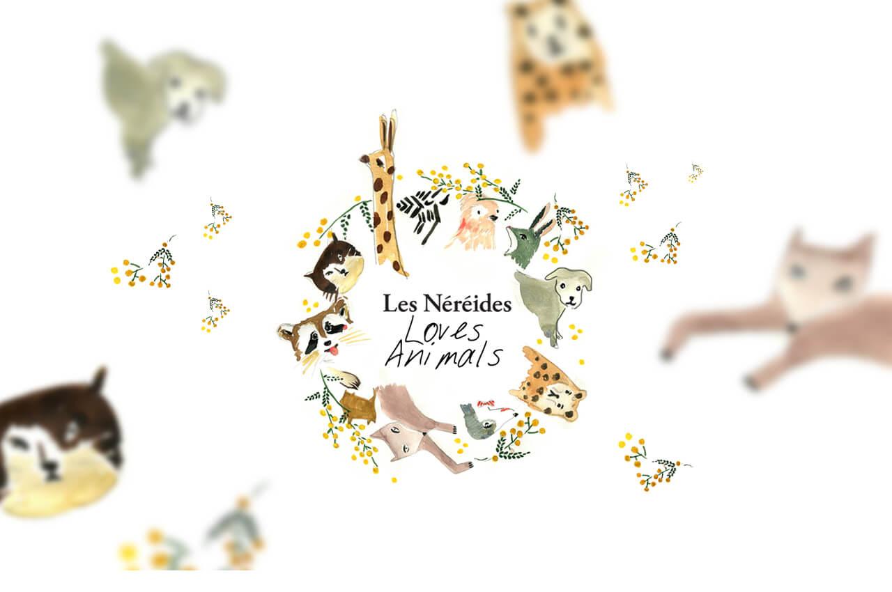 Wordpress création du site vitrine à Lyon avec Greentic